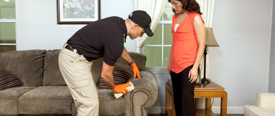 Buckeye, AZ carpet upholstery cleaning